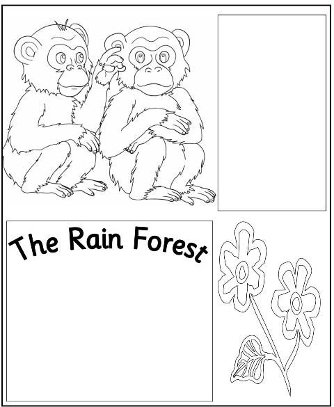 Rainforest plants and flowers coloring pages - photo#28